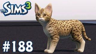 The Sims 3: New Feline Friend - Part 188