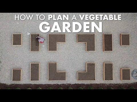 How to Plan a Vegetable Garden! 👩🌾🌿🍅 // Garden Answer
