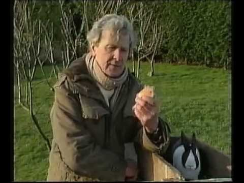 Dick KingSmith in RubADubTub. Rabbits episode.