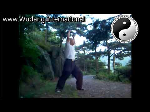 Old Mens Wudang Taoist Secret Turtle Long-Life (Longevity) Qi Gong Practice