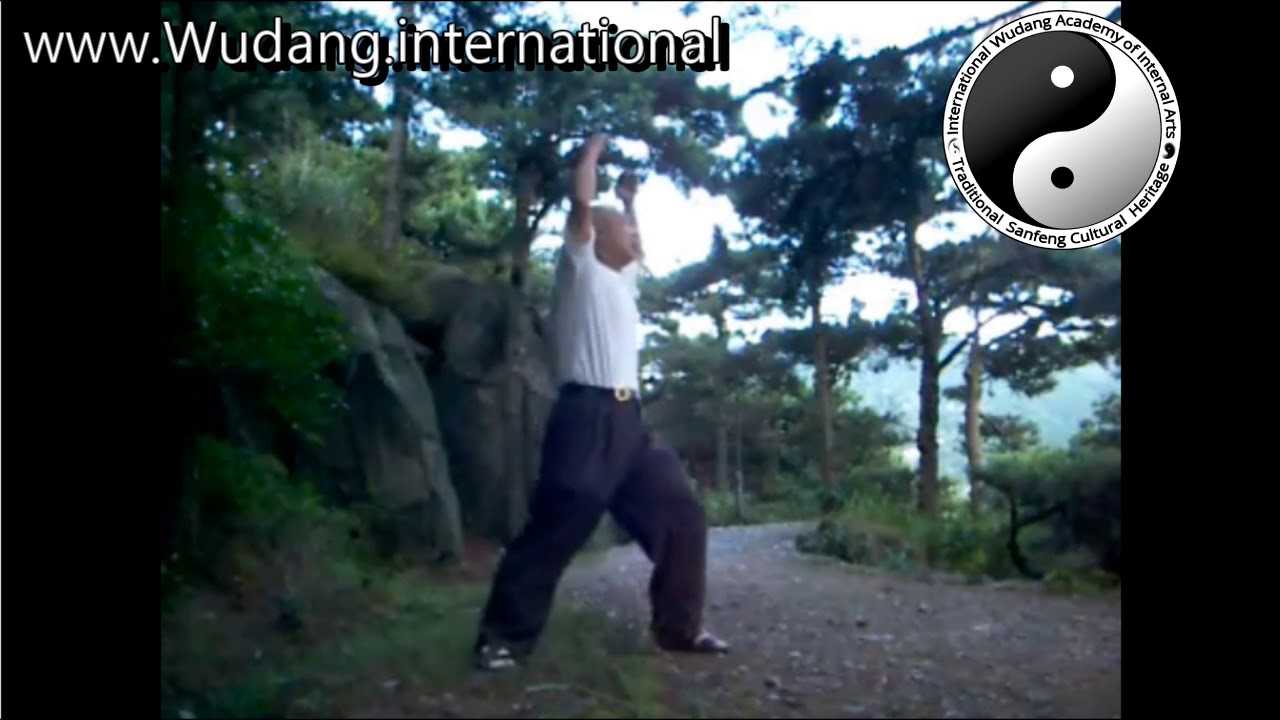Old Mens Wudang Taoist Secret Turtle Long-Life (Longevity) Qi Gong Practice