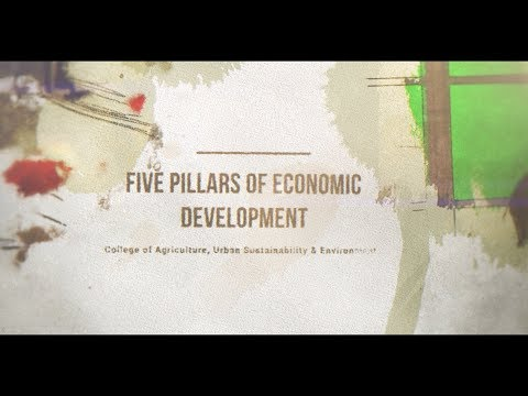 CAUSES Mini Lecture: The Five  Pillars of Economic Development