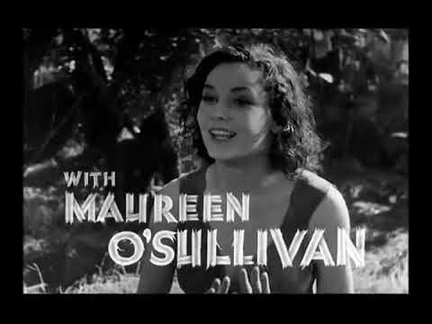 Tarzan & His Mate (1934)