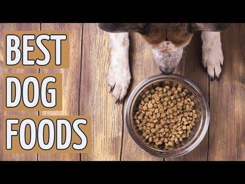 ⭐️ Best Dog Food: TOP 10 Dog Foods 2019 REVIEWS ⭐️