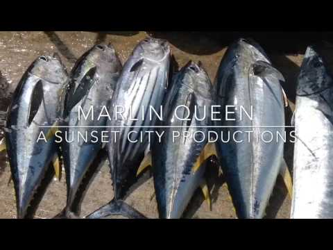 Cook Islands Holiday Guide - Marlin Queen Fishing Charter