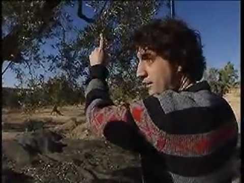 El català de la Franja de Ponent - Caçadors de Paraules
