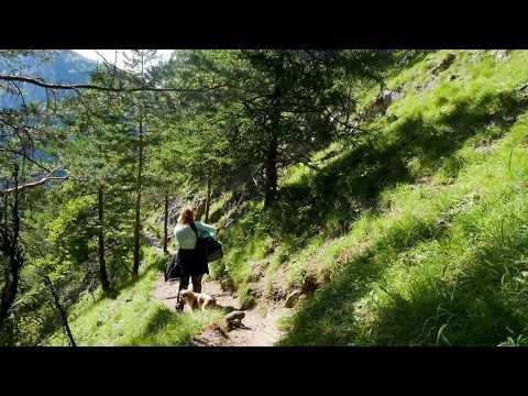 4k Hiking in Slovakia Travel Vacation - Malá Fatra  – Vrátna BOBOTY Panasonic Varicam 35