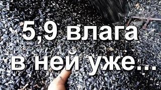 5-е видео про уборку подсолнуха |Эстрада | Нива СК-5 |  Краматорску 150 лет (СИ СИ КЕТЧ, Каменская)