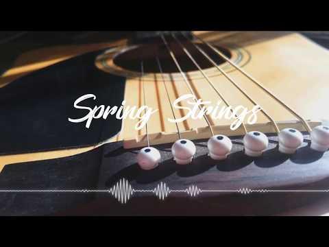 AP - Spring Strings
