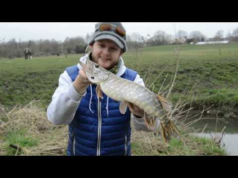 Savage Gear LRF CCS Light Range Fishing Rod Test with Andy Buckley streaming vf