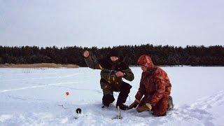 Ловля Щуки на Живца Ловлю Щуку Зимой на Жерлицы с Живцом - MaxFishing №54