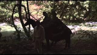 The Trip (1967) Subtitulada Español