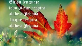 Todo lo que respira alabe a Jehová