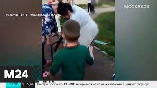 Новости мира за 11 сентября - Москва 24