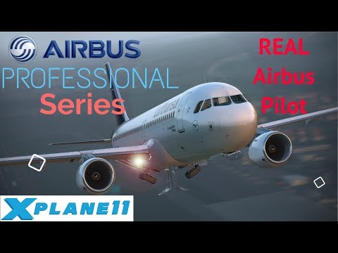 Repeat I ToLiss 319 I Real data VS Xp11 and New UPDATE by V1