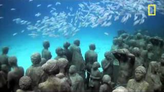 Cancun Coral Reef - Underwater Art
