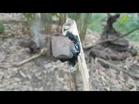 Using hard tree resin to make pitch for a mini stone axe