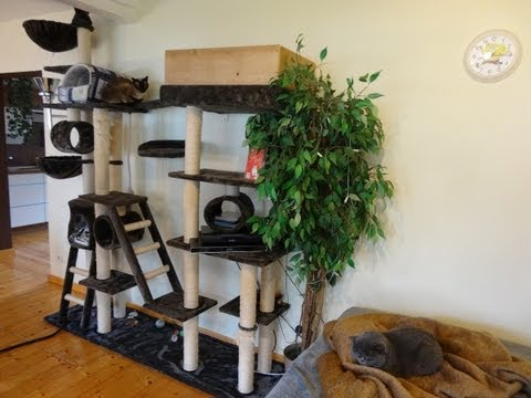 Katzenbaum selber bauen