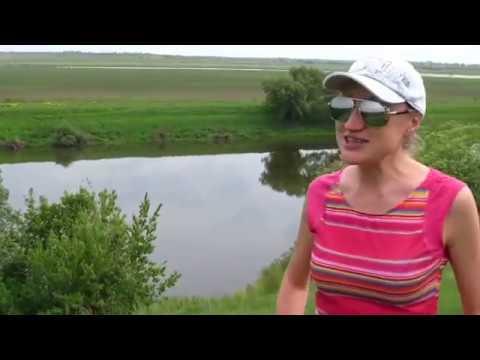 река быстрая сосна в ельце рыбалка