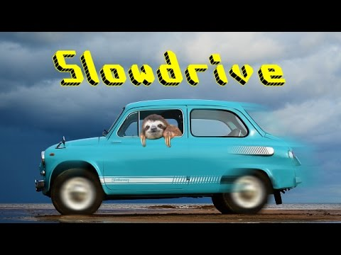 Let S Play Slowdrive Super Sdy Sloth