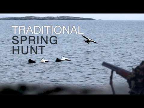Traditional Spring Hunt