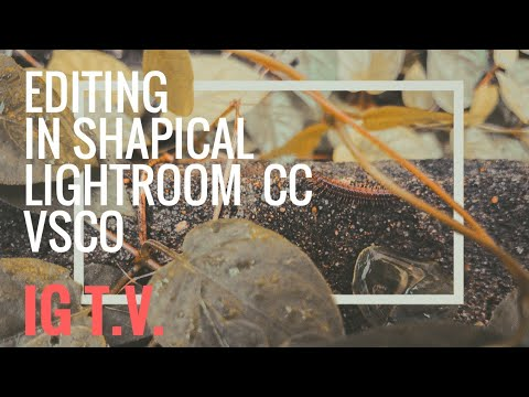 My ShapicalLightroom Mobile VSCO Stream IGTV