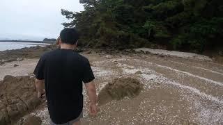 한국아저씨의 여행일기 태안 여행  솥향기길 1코스 X …