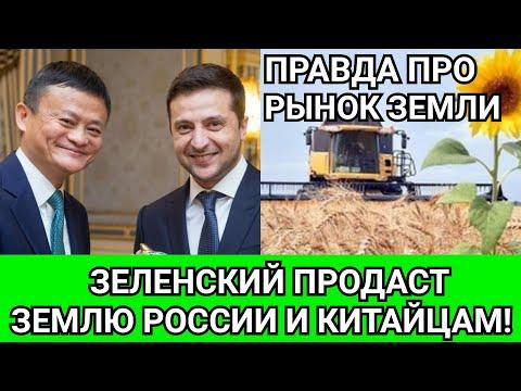 УЖАС: Зеленский продаст всю нашу землю России и китайцам! Что такое мораторий на продажу земли?