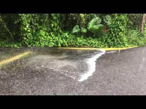 Hurricane Irma Heavy Rain and Water Rushing Titusville, FL