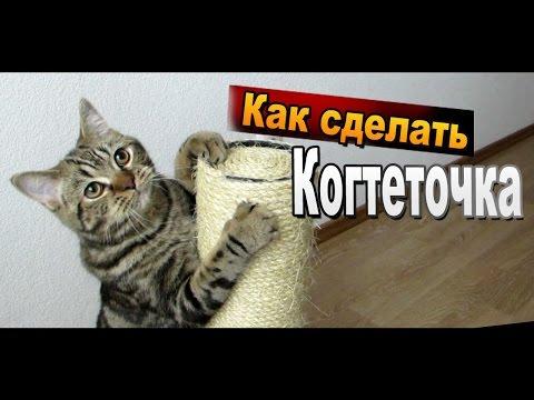 Как сделать когтеточку своими руками / Поделки для кошек Sekretmastera