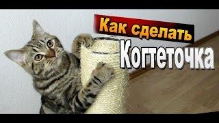 Как сделать когтеточку из веревки своими руками / Поделки для кошек Sekretmastera