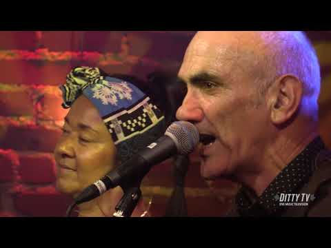 "Paul Kelly performs ""Finally Something Good"" on DittyTV"