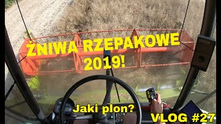 VLOG#27: Żniwa rzepakowe 2019! / Jak sypał rzepak bezorkowy? / Claas Medion 310