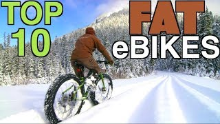 Top 10 Fat Tire Electric Bikes