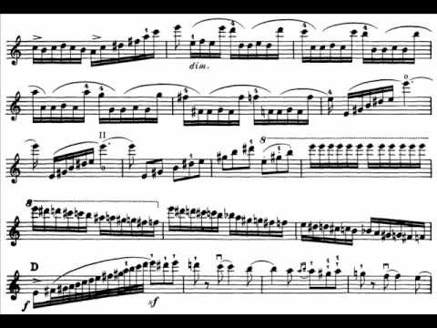 Saint-Saëns, Camille  Introduction + Rondo Capriccioso op. 28 violin & orchestra