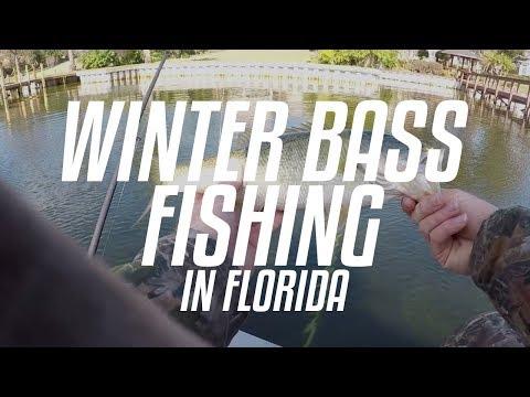 JANUARY // Winter Bass Fishing In Florida