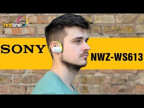 плеер mp3 sony nwz e473 4gb black
