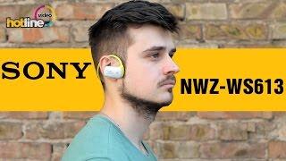 обзор Sony NWZ-WS613