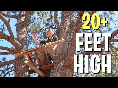 FINDING ABANDONED TREE HOUSES!