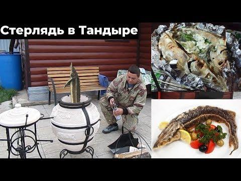 Стерлядь в Тандыре. Как приготовить рыбу в Тандыре?