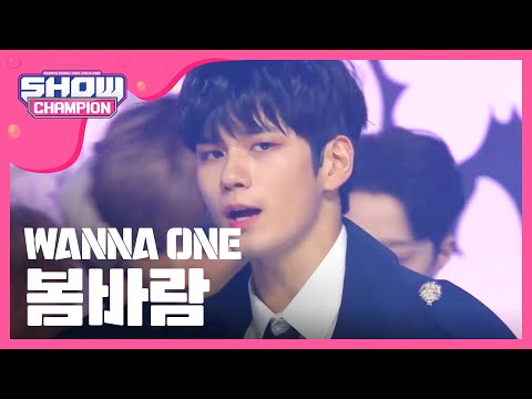 Show Champion EP.294 Wanna One - Spring Breeze
