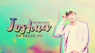 ❇️ ✴️ [SEVENTEEN] JOSHUA ON CRACK #5!!! (THANK YOU FOR THE 500+ SUBS!) ✴️ ❇️