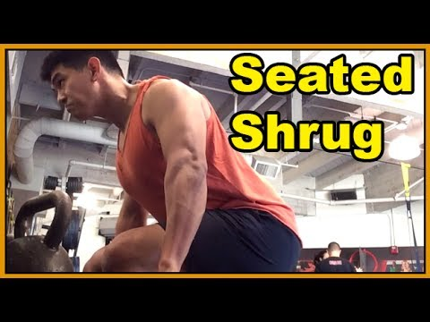 Seated Shrugs: Upper Back Tightness For A Bigger Bench Press