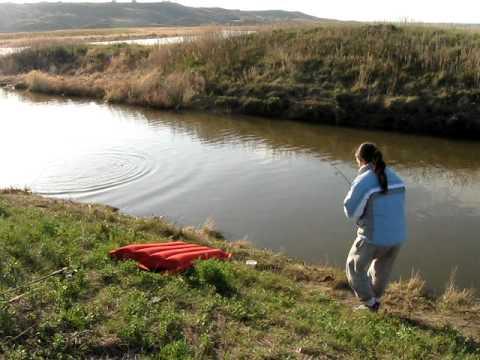 Carp fishing, Regina SK