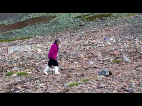 The Greenlandic Way. Trailer.