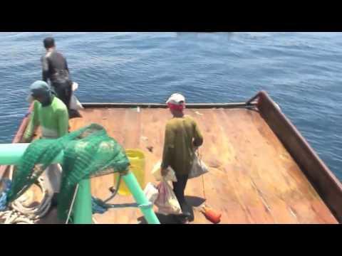 Illegal Hulbot Hulbot In Daanbantayan Municipal Waters