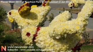 Ahmedabad Flower Show 2017   Riverfront Park Flower Exhibition Event