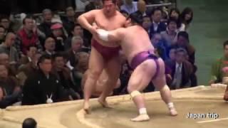 2017大相撲春場所での遠藤 vs 宝富士の取組。