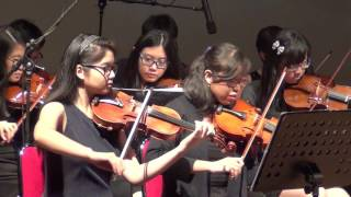 Perform with Violin Chamber Ensamble