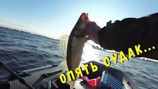 08.10.2019 Рыбалка на Финском заливе. Судак есть...